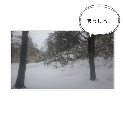 20-01-13-14-38-49-690_deco
