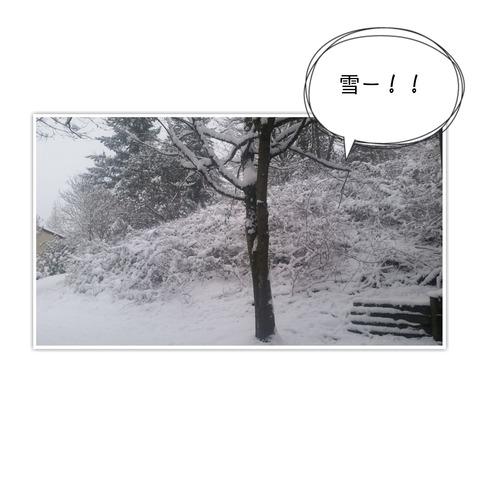 19-02-04-08-18-17-031_deco[1]