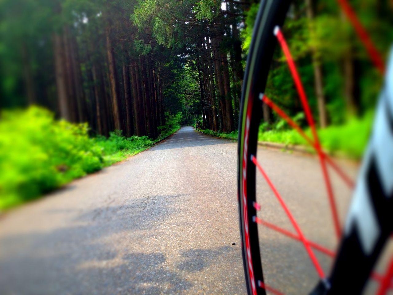 Bicycle Laboratory自転車ブログ:膝 ...