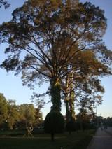 road to Angkor wat2
