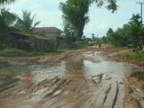 雨季の道2