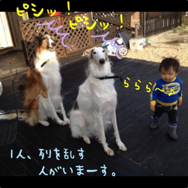 d0729bc9.jpg
