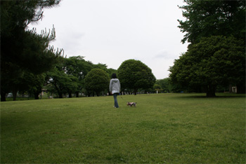 2008.5.19i