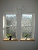 可愛い春色の窓