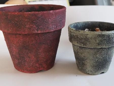 鉢の色づけ