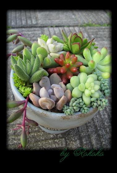 リメーク鉢試作品
