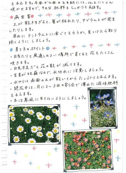 3_kobayashi_1224b