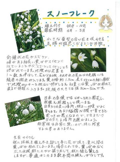 6-kawai-0405