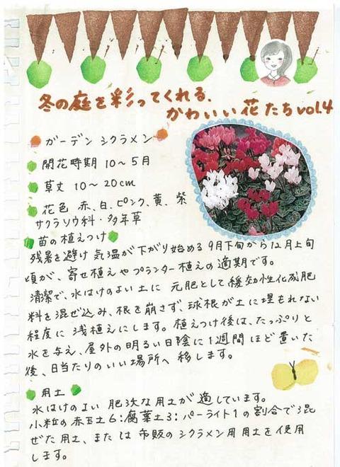 3_kobayashi_1112a