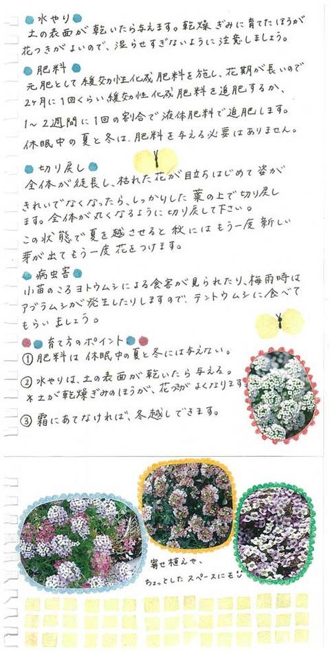 3_kobayashi_1126b