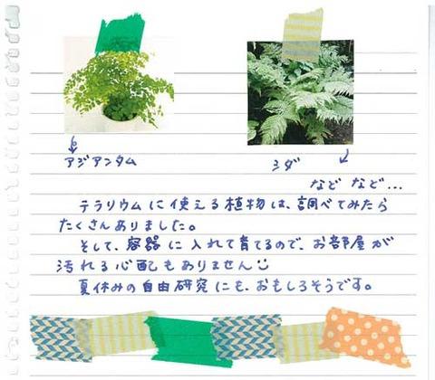5_koyayashi_0721d