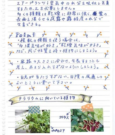 5_koyayashi_0721b