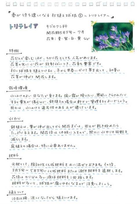3_suto_0924a