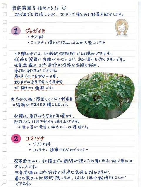 5_suto_0127a