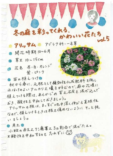 3_kobayashi_1126a