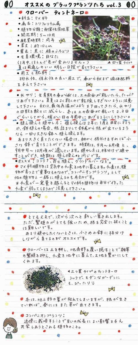 2_koyayashi_0327a