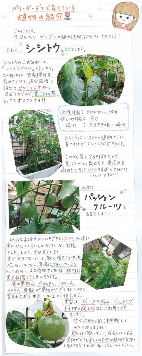 ishikawa_0714(2)