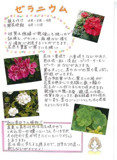 5-kawai_0526