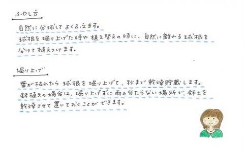 3_suto_0924b