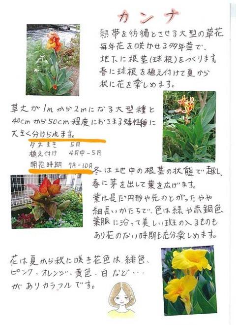 5-kawai_0730