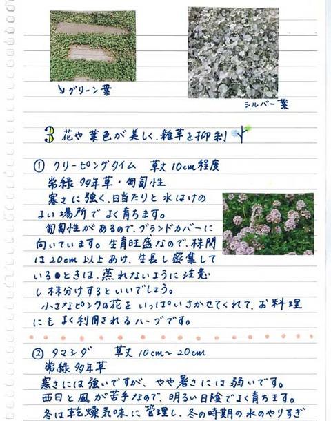 5_koyayashi_0519d