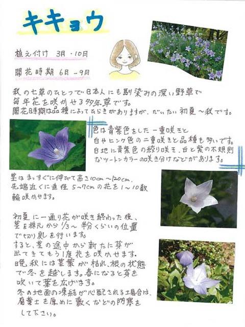 6-Kawai-0621