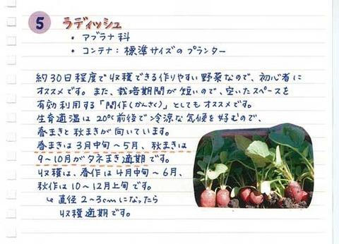 5_suto_0127c