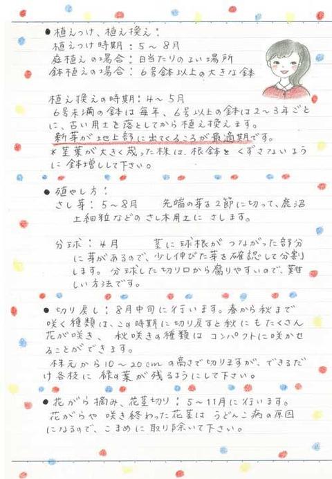 2_kobayashi_0731b