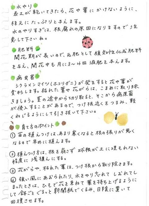 3_kobayashi_1112b