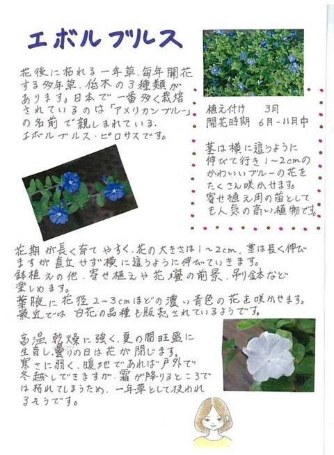5-kawai_0317