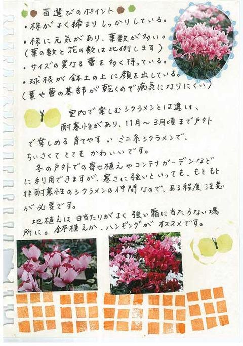 3_kobayashi_1112c