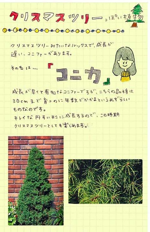 2_tagami_1222