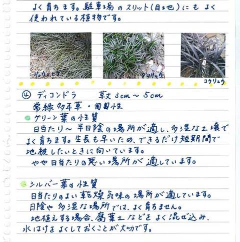 5_koyayashi_0519c