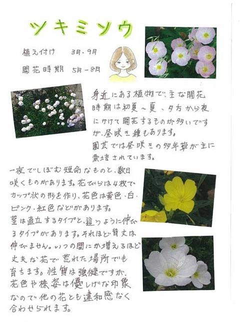 6-kawai-0531