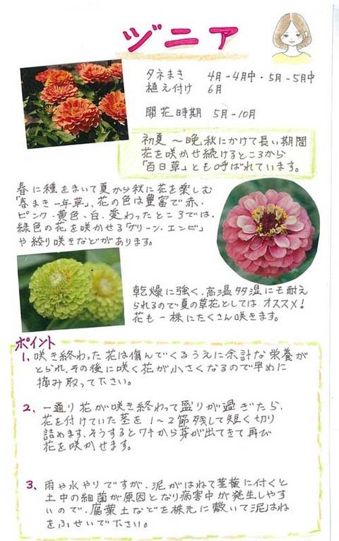 5-kawai_0428