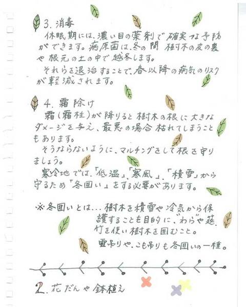5-kobayashi-b