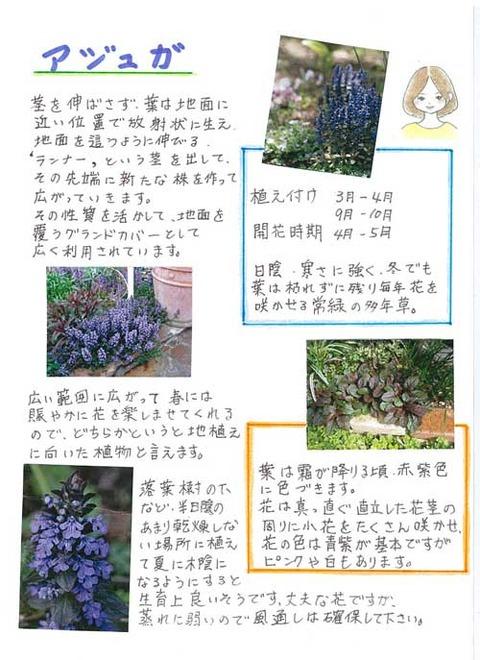 5-kawai_0407