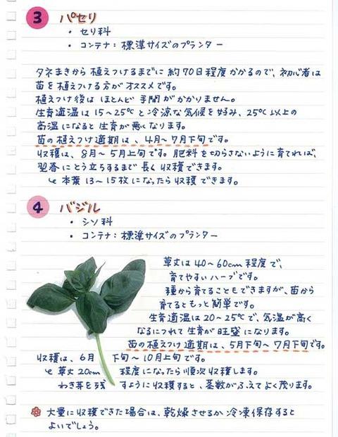 5_suto_0303b