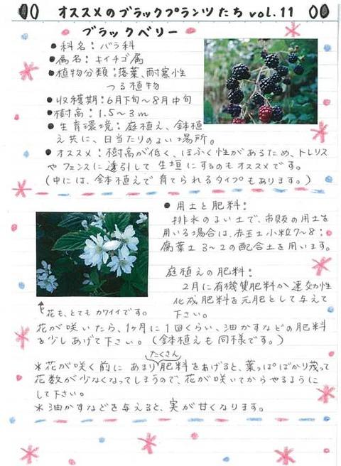 2_koyayashi_1127a