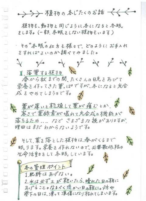 5_koyayashi_1020a
