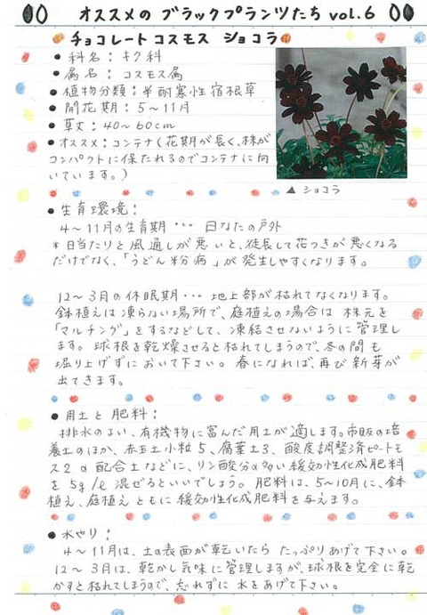 2_kobayashi_0731a
