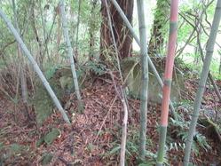 8守衛所向かいの竹林内の不明遺構
