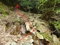 5中世観瀧寺跡への道