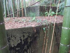 2福知山海軍航空基地飛行場指揮所壕迷彩跡
