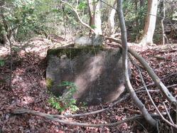 8愛宕山防空砲台燃料庫壕上部遺構