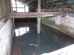 14大浴場3