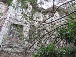 8奈良市内某所の廃洋館