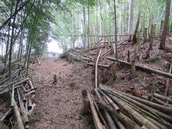 8福知山陸軍演習陣地通路か