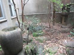 9辻徳商店坪庭