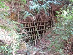 51地下壕6入口